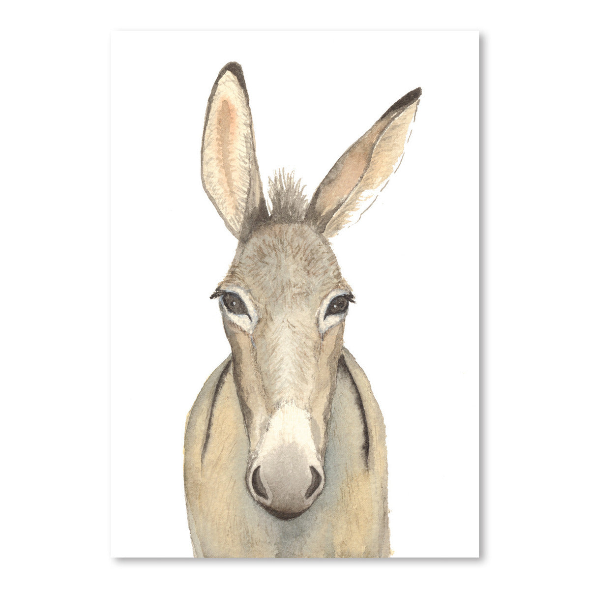 Donkey by Cami Monet - Art Print - Americanflat