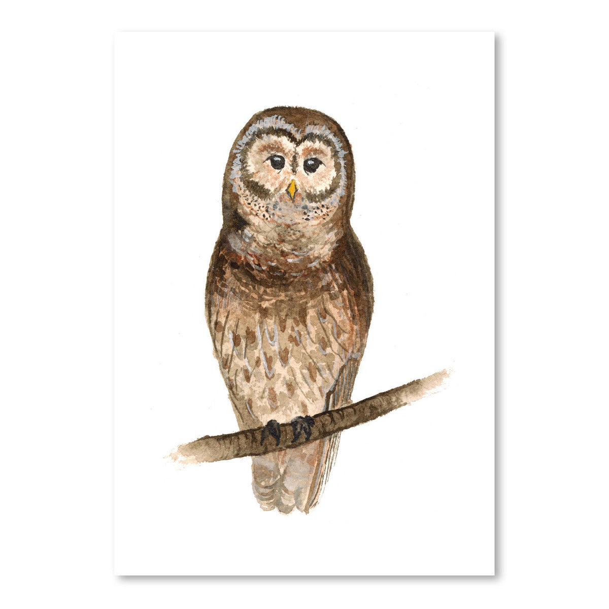 Owl by Cami Monet - Art Print - Americanflat