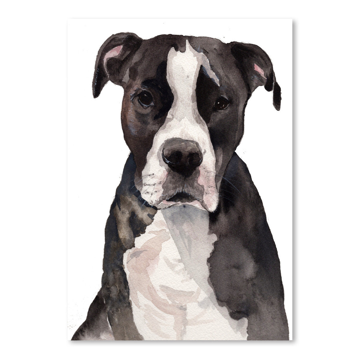 Pitbull by Cami Monet - Art Print - Americanflat