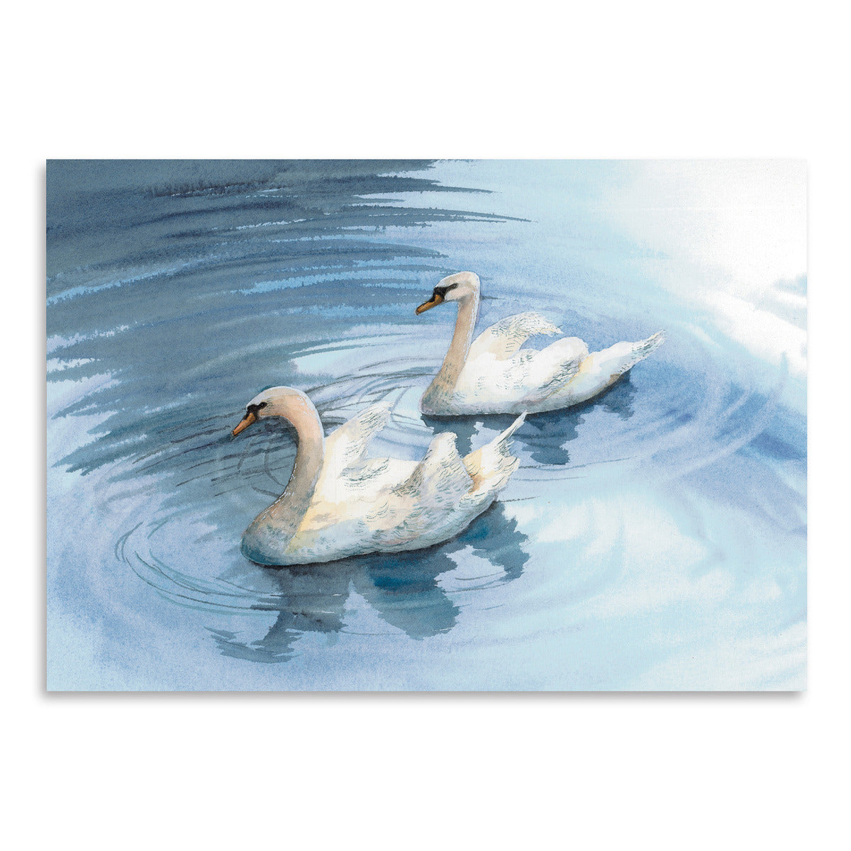Swan by Cami Monet - Art Print - Americanflat