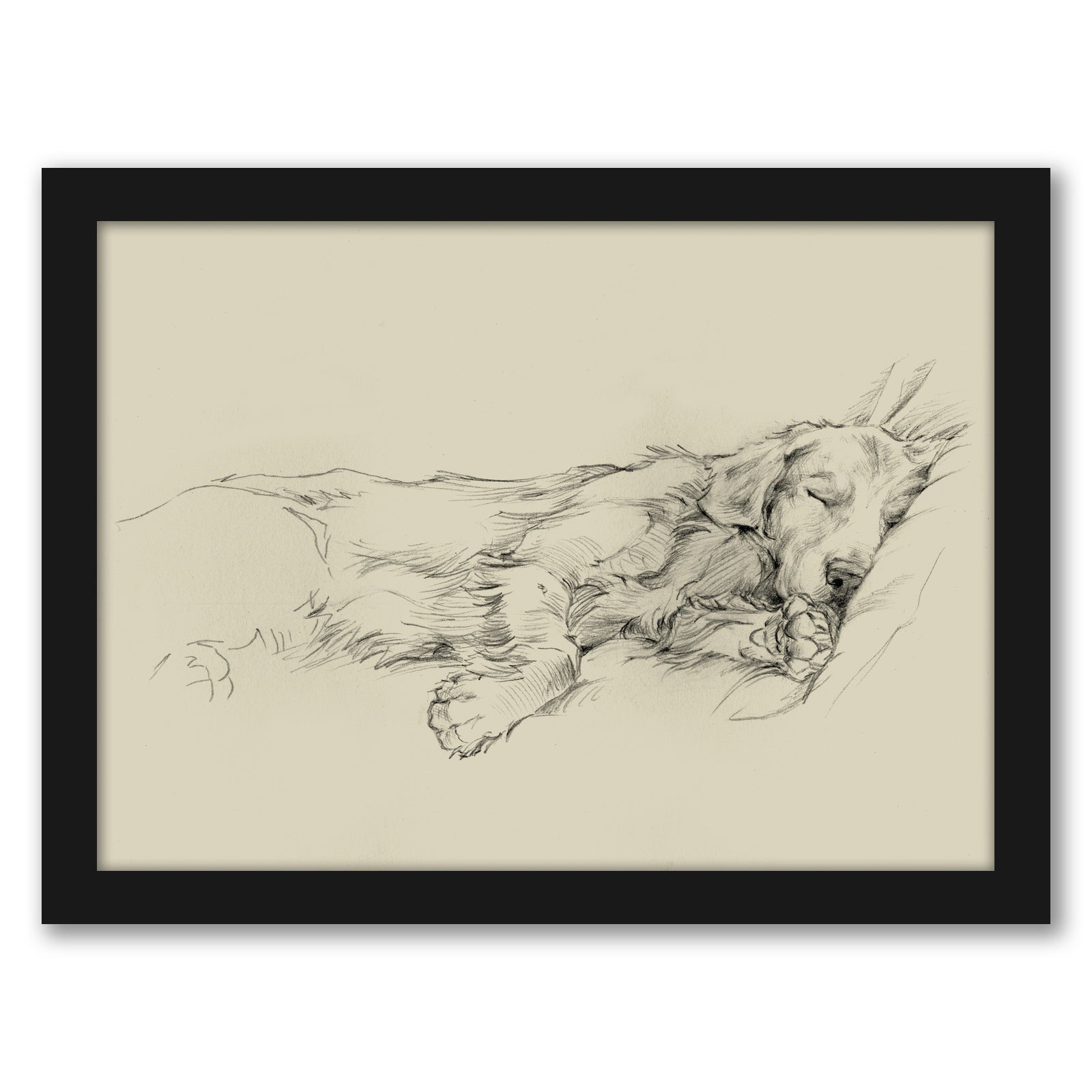 Dog Days III by Ethan Harper by World Art Group - Black Framed Print - Wall Art - Americanflat