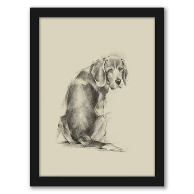 Puppy Dog Eyes I by Ethan Harper by World Art Group - Black Framed Print - Wall Art - Americanflat