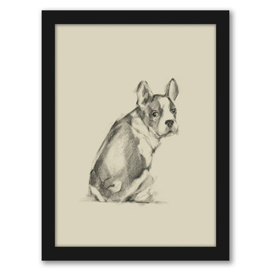 Puppy Dog Eyes IV by Ethan Harper by World Art Group - Black Framed Print - Wall Art - Americanflat