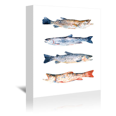 Stacked Trout I by Emma Scarvey by World Art Group - Wrapped Canvas - Wrapped Canvas - Americanflat