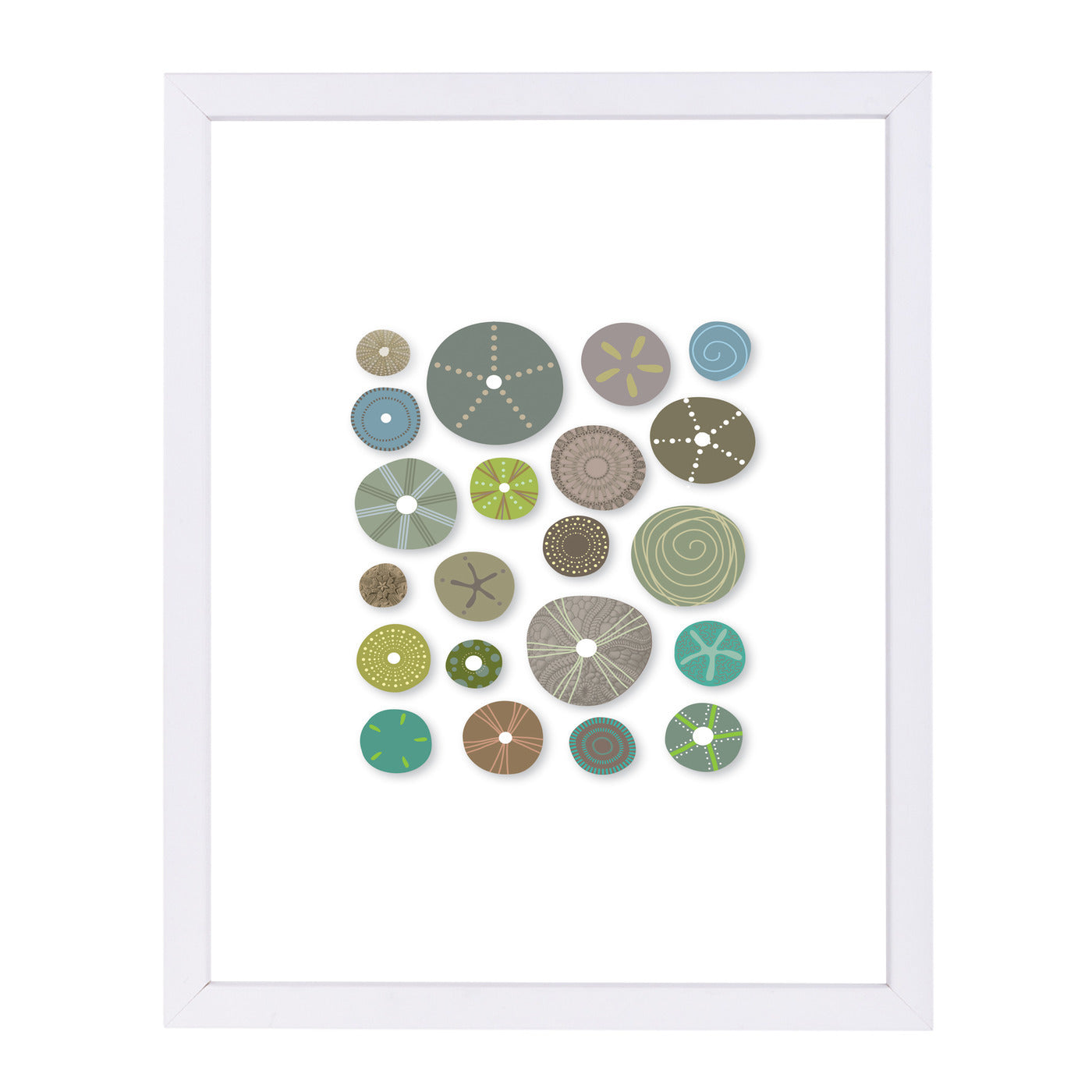 Sea Urchins 2 by Visual Philosophy Framed Print - Wall Art - Americanflat