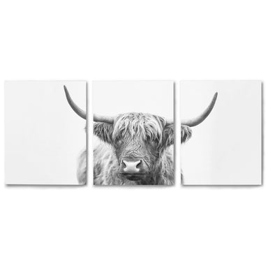 3 Piece Framed Triptych Highland Bull Horns by Sisi and Seb