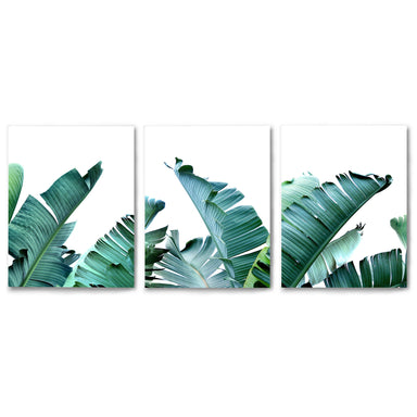 3 Piece Framed Triptych Tropical Palms by Tanya Shumkina