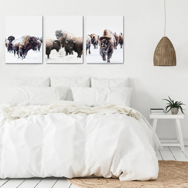 Yellowstone Bison by Tanya Shumkina - 3 Piece Canvas Triptych - Americanflat