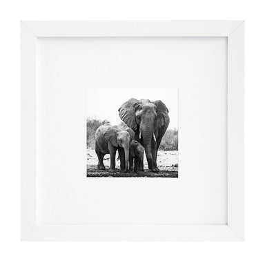Wood Picture Frame - Frame - Americanflat