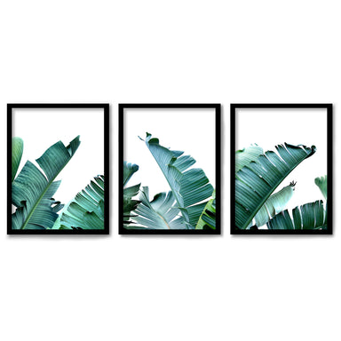 Tropical Palms by Tanya Shumkina 3 Piece Framed Triptych