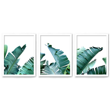 Tropical Palms by Tanya Shumkina - 3 Piece Framed Triptych Wall Art Set - Americanflat