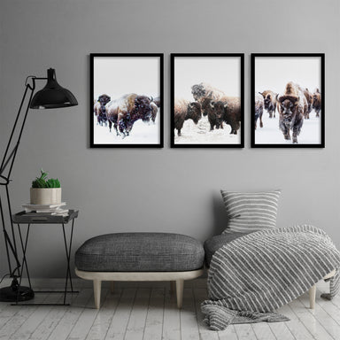 Yellowstone Bison by Tanya Shumkina 3 Piece Framed Triptych - Americanflat