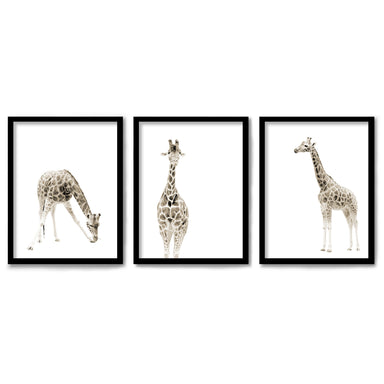 Minimalist Giraffes by Wall + Wonder 3 Piece Framed Triptych
