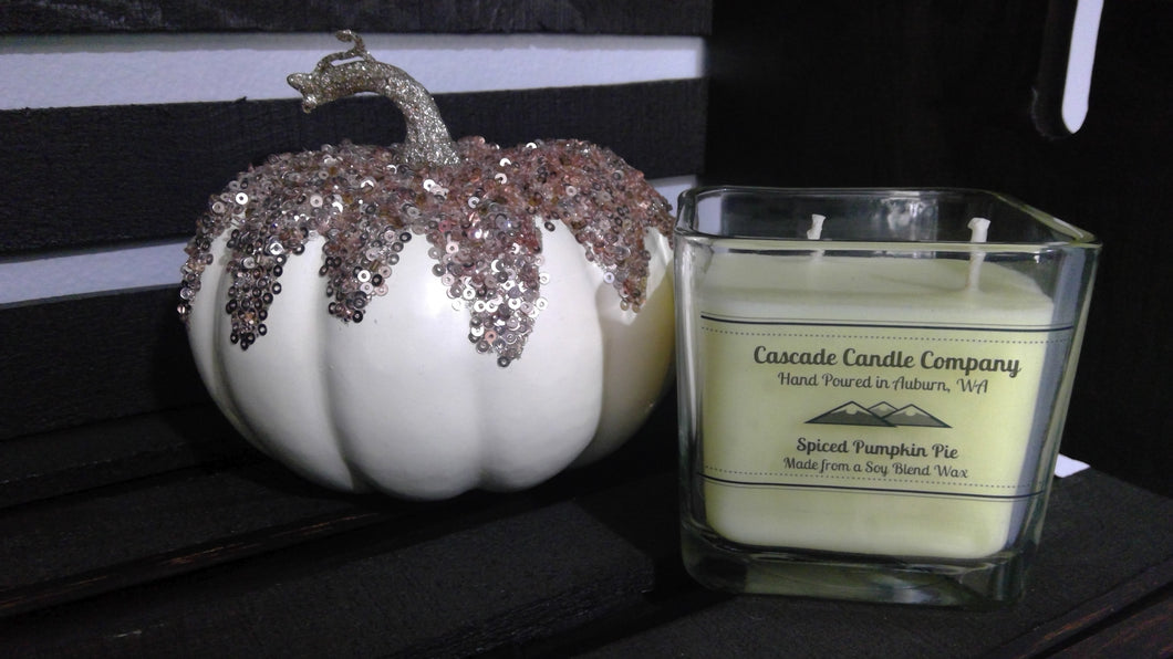 Closeout 11oz Soy Candle Spiced Pumpkin Pie