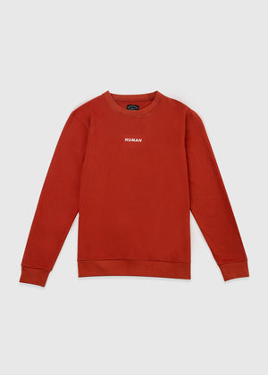 SWEATSHIRT BROWN SS20