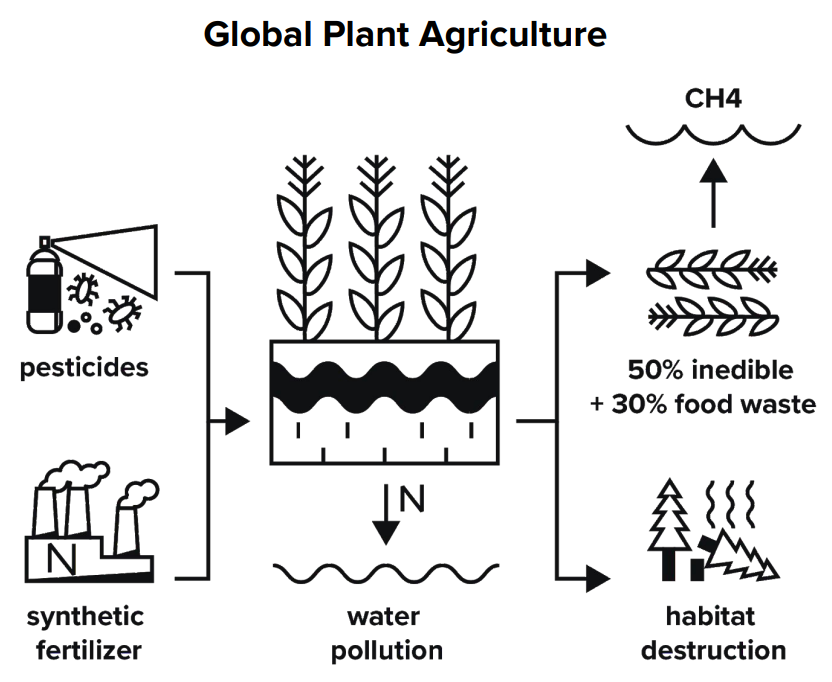 Plant Agriculture