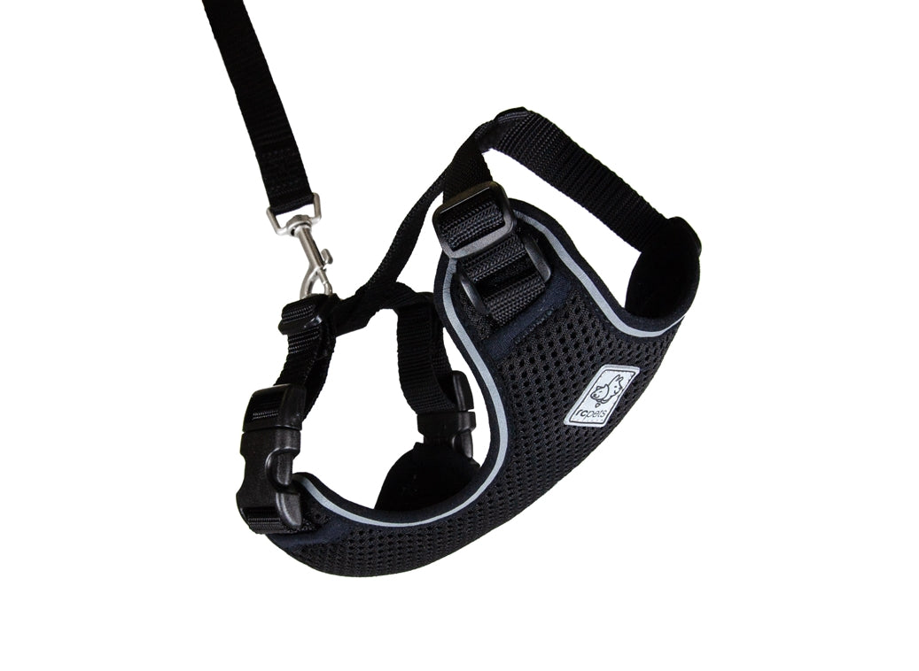 RC PETS Adventure Kitty Harness w/Leash Black, small