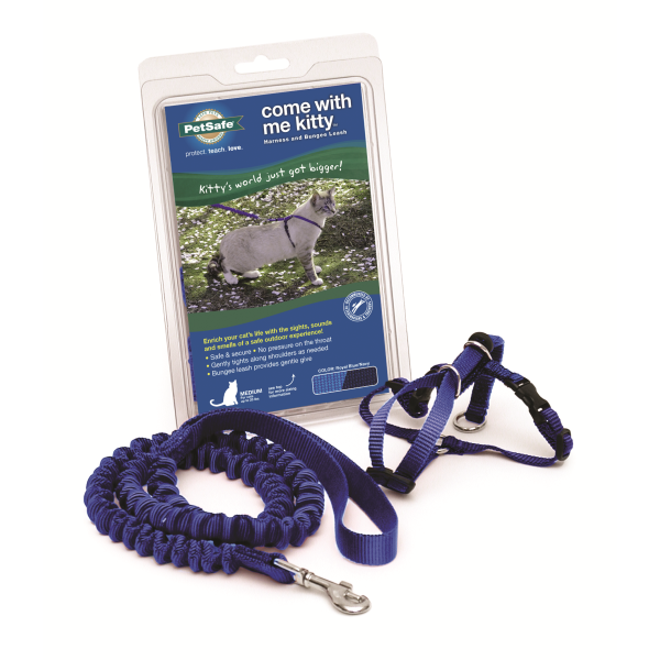 PETSAFE Come With Me Kitty Harness and Bungee Leash, Royal Blue Medium