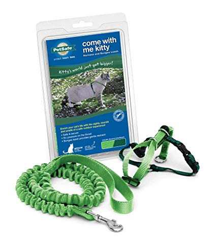PETSAFE Come With Me Kitty Harness and Bungee Leash, Small, Lime Green