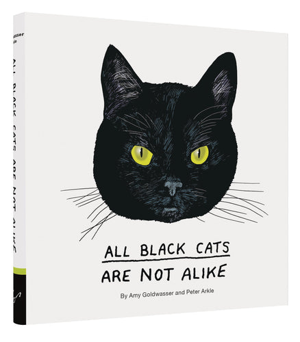 All Black Cats Are Not Alike, by Amy Goldwasser and Peter Arkle