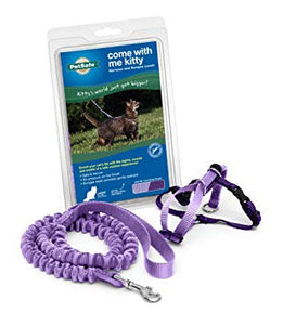 PETSAFE Come With Me Kitty Harness and Bungee Leash, Medium, Purple