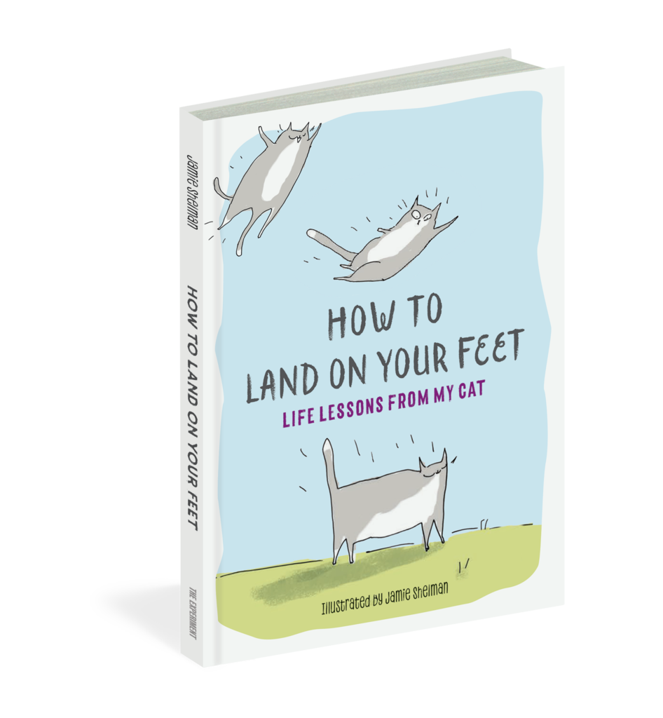 How to Land on Your Feet - Life Lessons From My Cat by Jamie Shelman