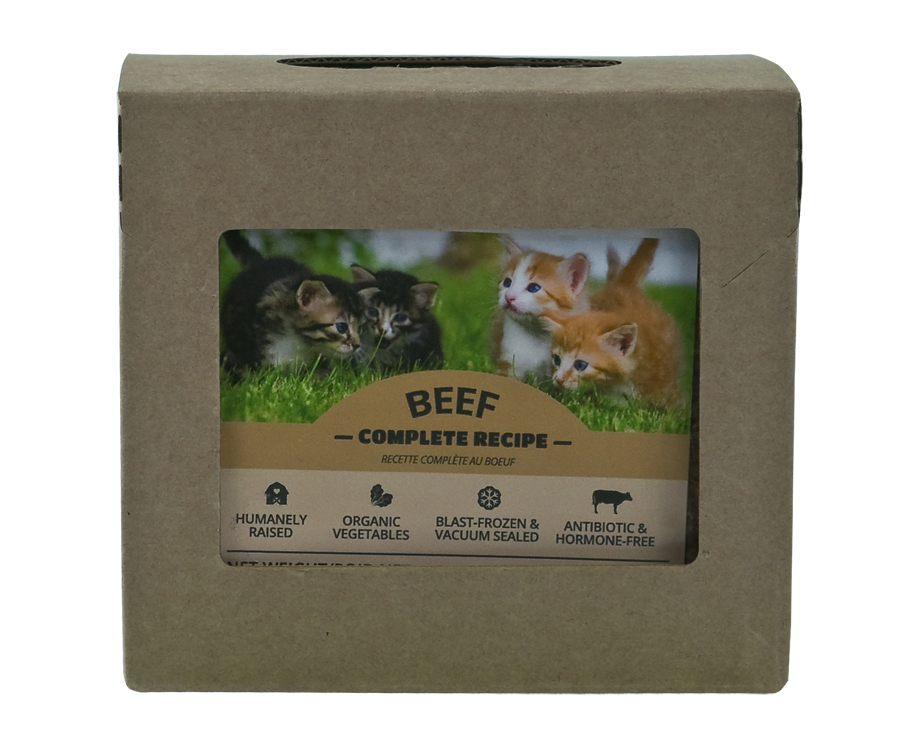 RED DOG BLUE KAT Beef Complete Recipe, 227g