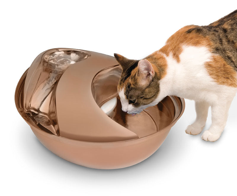 PIONEER PET Raindrop Stainless Steel Drinking Fountain, Rose Gold