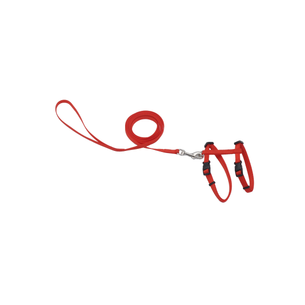 COASTAL Adjustable Harness with 6' Leash, Red