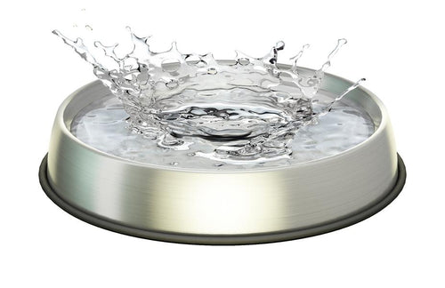 DR. CATSBY Stainless Steel Water Bowl for Whisker Relief