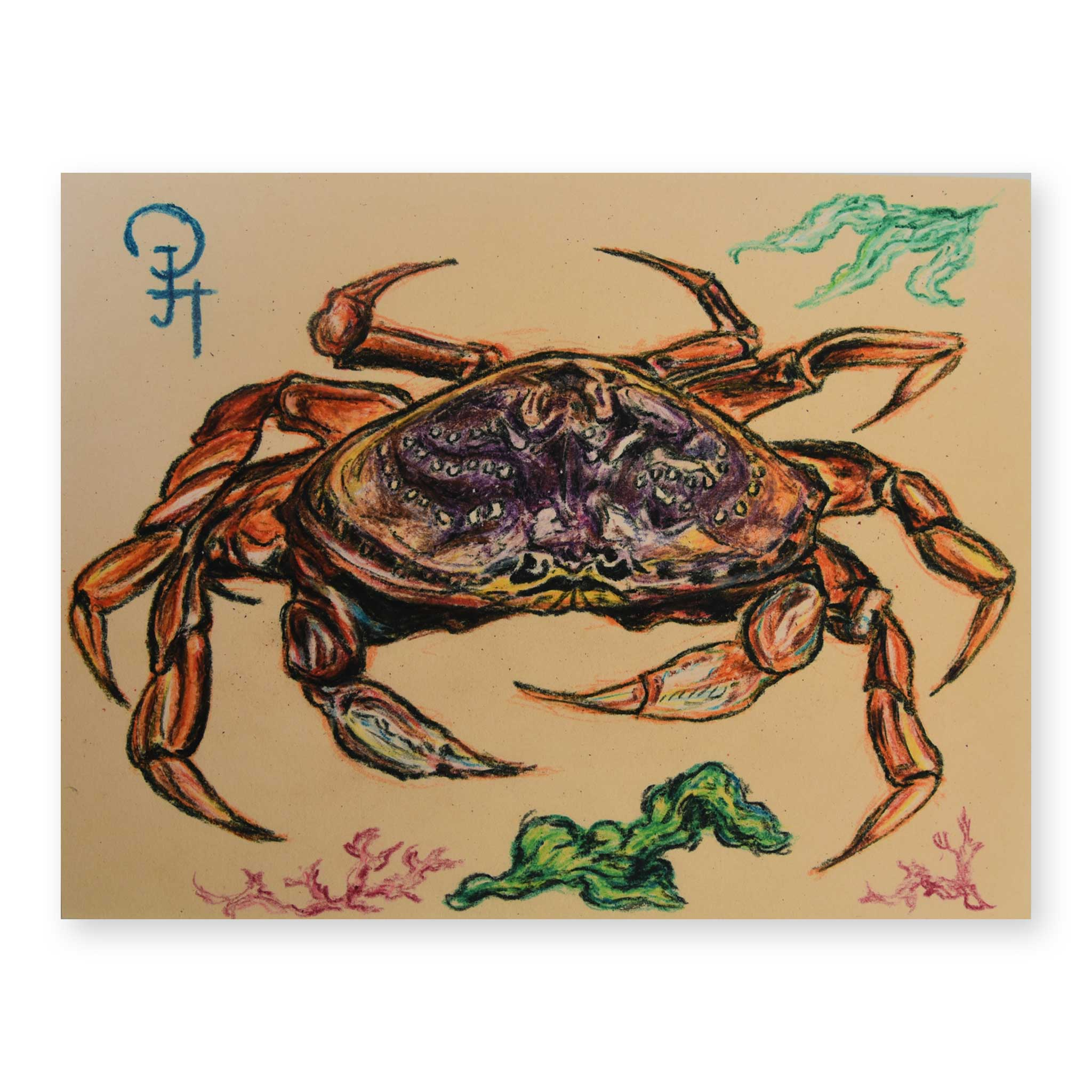 PH Crab Illustration Print