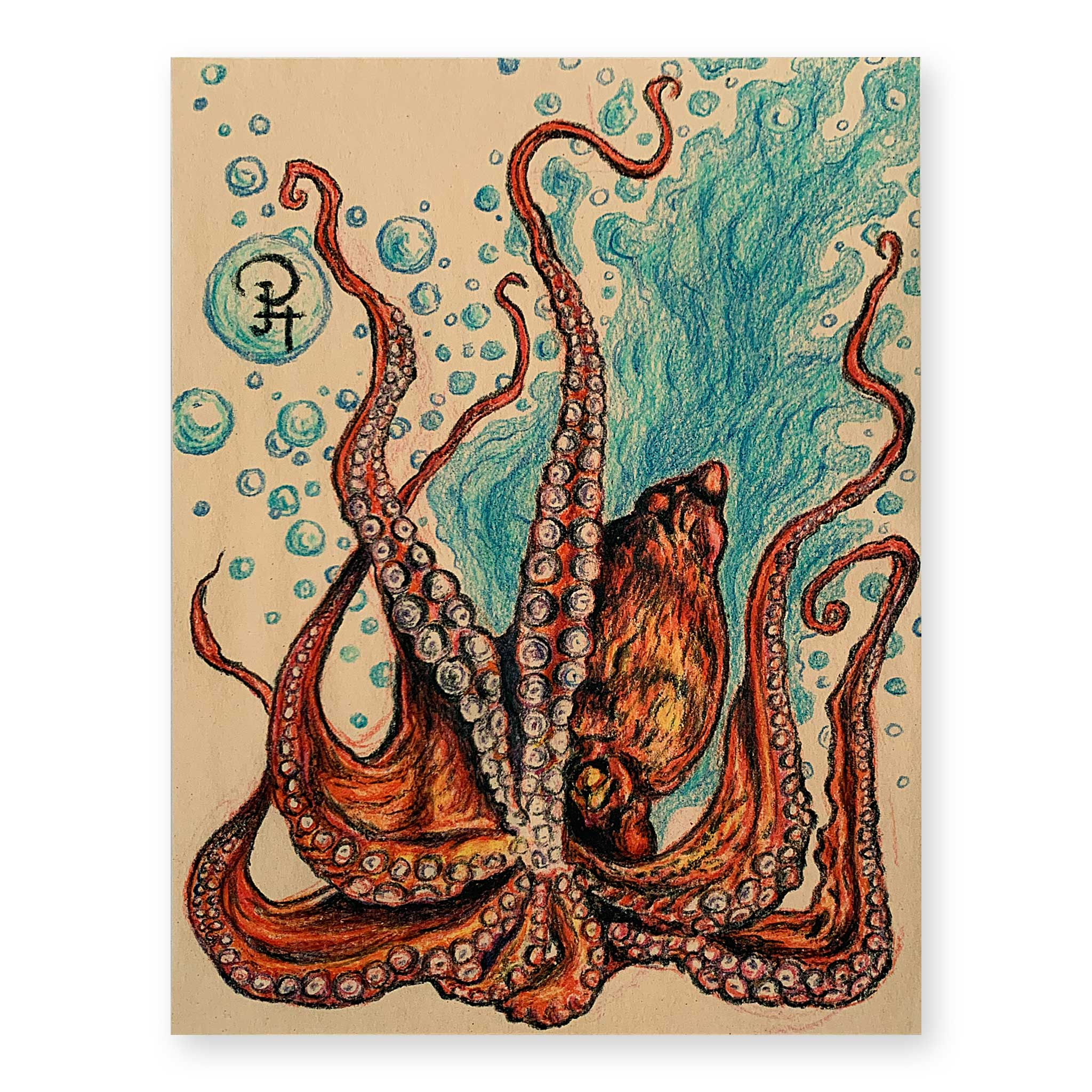 Octopus on Maple Wood