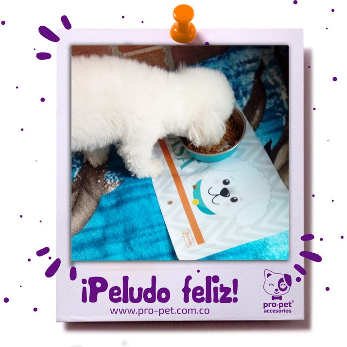 Individual para perro French Poodle