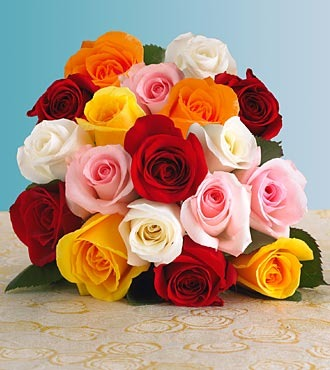 Valentine's Day Special!! Dozen Roses Mixed Colors