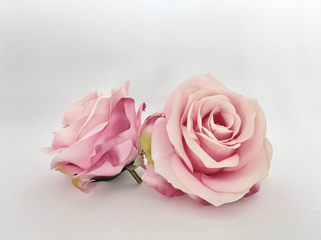 "3.5"" Two Tone Pink Rose"