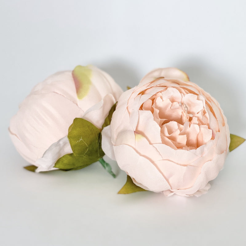 "4"" Double Peony in Pale Peachy Pink Closed Pink Peony Blush Peony Closed Light Pink Peony Blush Pink Peony Wedding Peony Flower Cake Peony"