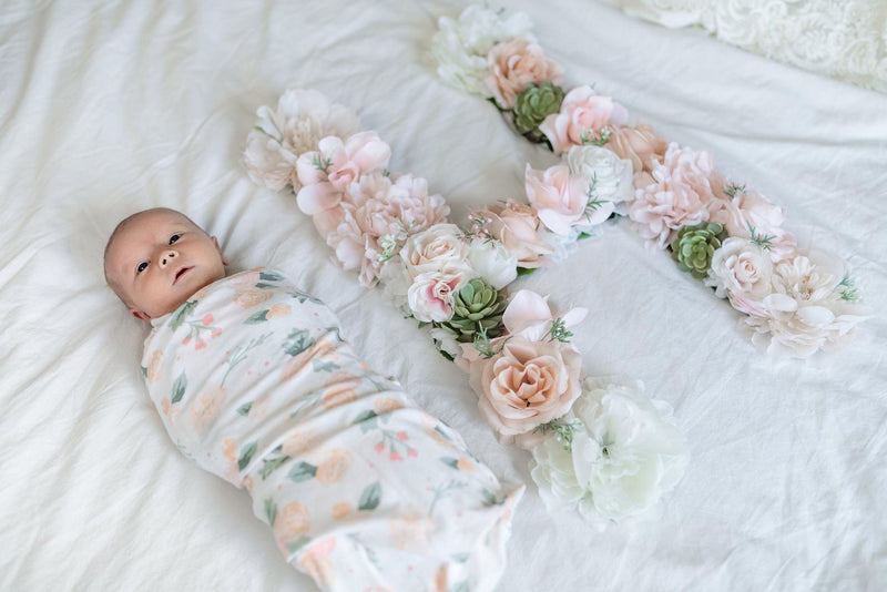 newborn photo prop milestone photo prop milestone photo idea newborn pictures blush nursery decor girl