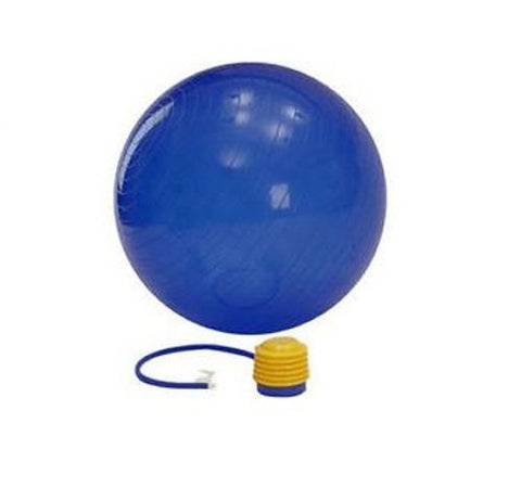 Vector X Gym Ball, 65cm (Blue) - Best Price online Prokicksports.com