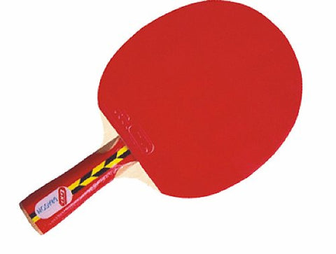 GKI Dragon Table Tennis Racquet - Best Price online Prokicksports.com
