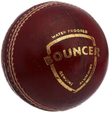 SG Bouncer Leather Ball - Best Price online Prokicksports.com