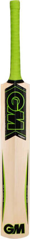 GM Paragon Striker Kashmir Willow Cricket Bat - Best Price online Prokicksports.com