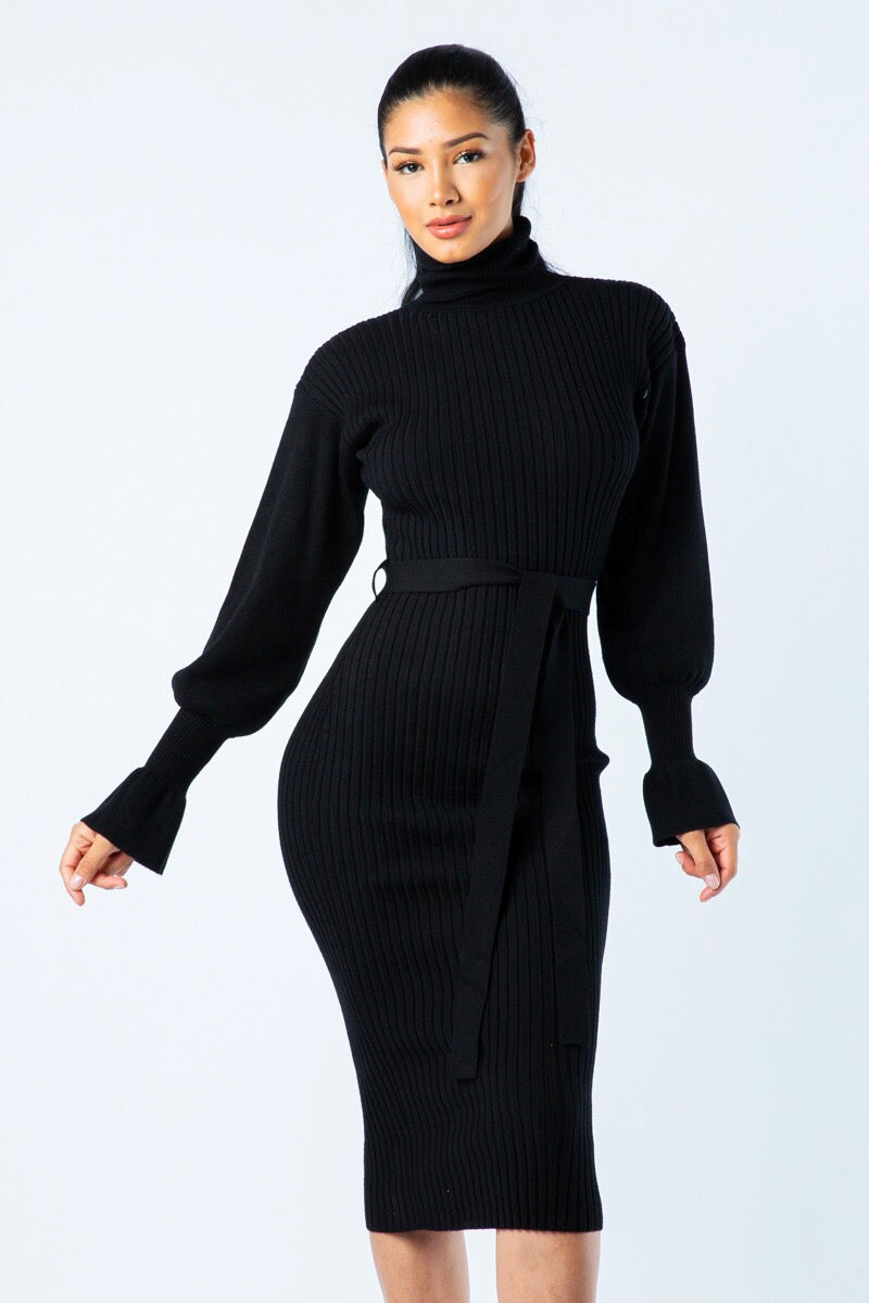 Soft Spot Black Turtle Neck Sweater Dress