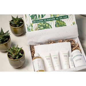 CBD Essentials Box