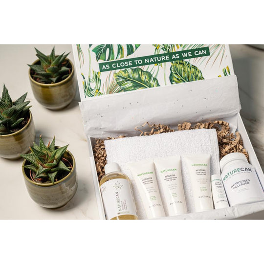 CBD essentials beauty box