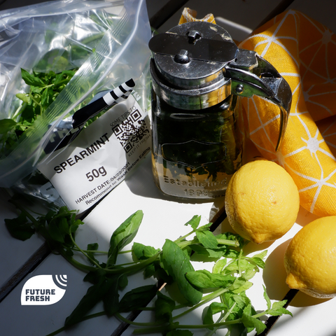 Simple Syrup with Future Fresh Spearmint