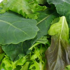 Our Salad Mixes with are mixed greens of our Salanova Lettuce, Roquette Arugula and Baby Kale with leaves perfect for cooking, salads and many more.   Farm to Door Delivery of Fresh Lettuce in Manila