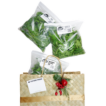 Load image into Gallery viewer, Future Fresh Leafy Greens Mix Gift Bag