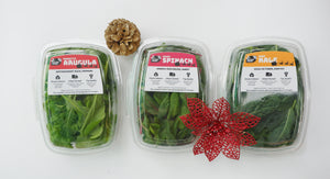 Future Fresh Sampler Christmas Bag