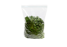 Load image into Gallery viewer, coriander wansoy leaves in a bag where to buy and price for order