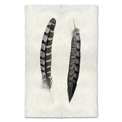 2 Curved Feathers (Partridge Wing / Lady Amherst Pheasant Tail)
